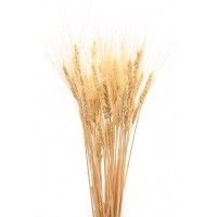 Decorative Wheat Bundles