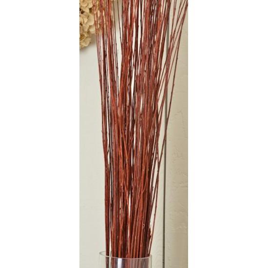 Asian Willow 4-5 foot