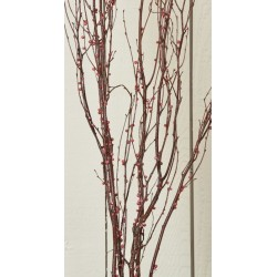 Berry Birch Branches - Red