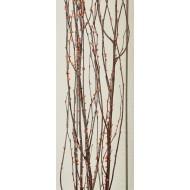 Berry Birch Branches - Bittersweet (Orange)
