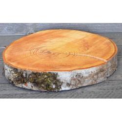 Red Alder Wood Slabs (Birch Slices) - Large Slices