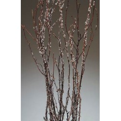 Ice Crystal Birch Branches