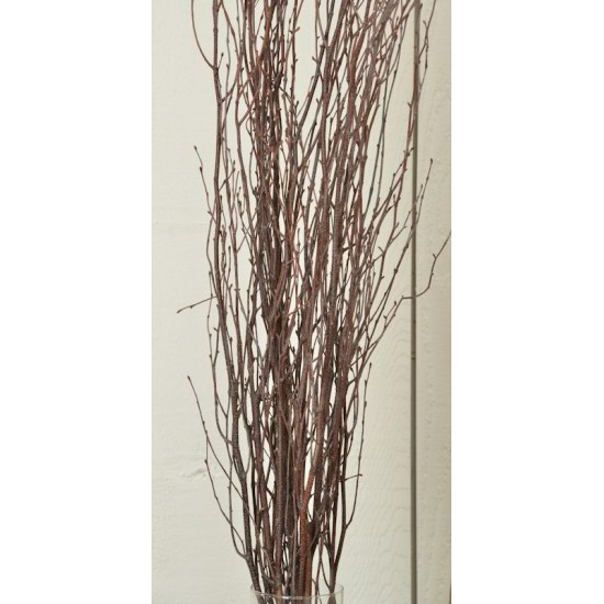 Decorative Birch Branches 4-5ft (Case Only)