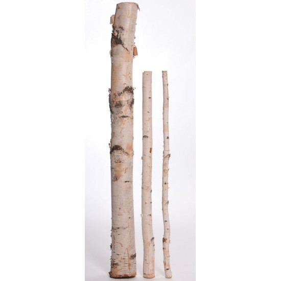 Long Decorative White Birch Poles - 8 ft long