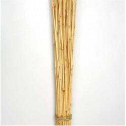 Dried Honey Bamboo Stack - 4ft Natural