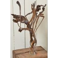 Dried Natraj Branches - Natrag Branches