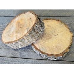 Elm Wood Slices - Medium