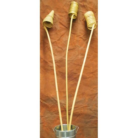 Giant Cane Coils, Cane Cones
