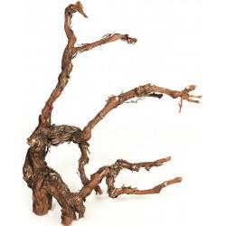 Grapewood Branches - Natural - Grape Wood