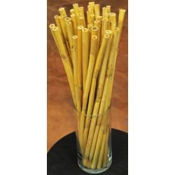 Short Dried Bamboo Stalks - Shoots