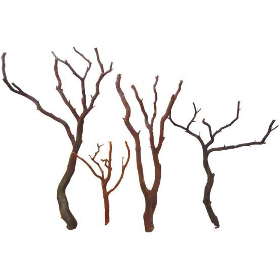 Natural Manzanita Bird Perches - Trees