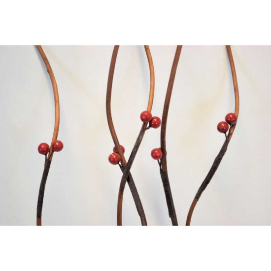 Berry Branches - Red Berries