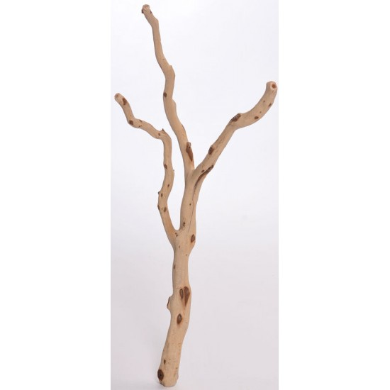 Sandbasted Manzanita Bird Perches - Trees