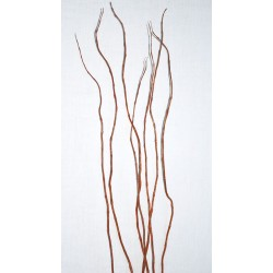 Curly Willow Branches for Centerpieces (Short Stem)