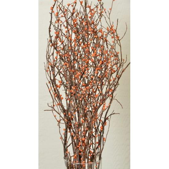 Berry Sweet Huck Branch Bittersweet