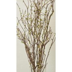 Berry Sweet Huck Branch Green