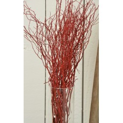 Sweet Huck Branches - Fire Red Huge 8oz Huckleberry bunch