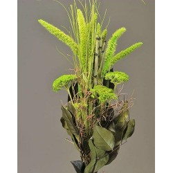 China Millet Green Bouquet
