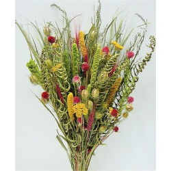 Dried Flower Bouquet - Painted Desert Bunch