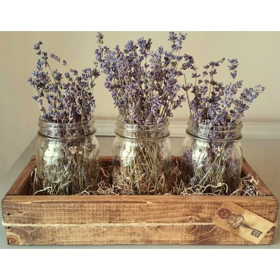 Dried Flower Clear Mason (Ball) Jar Set