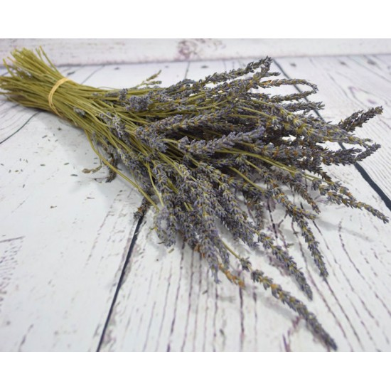 French Lavender Field Bunch - Grosso