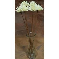 Dried Mum Flowers - 6 Mum Flower Stems