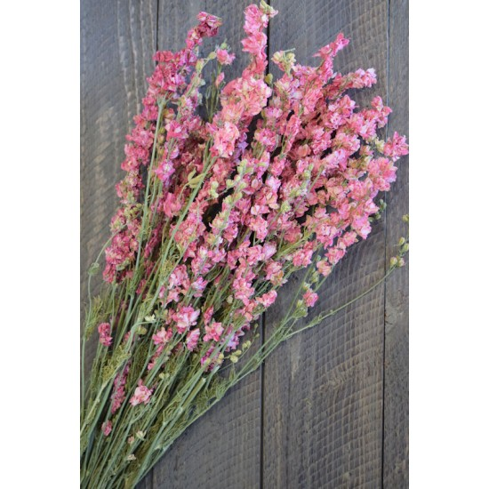 Dried Pink Larkspur Flowers For Sale