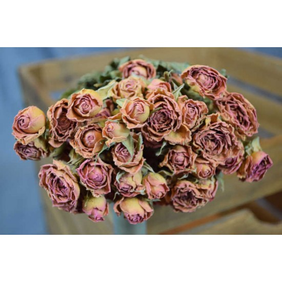 Massive Dried Rose Bouquet - Pink