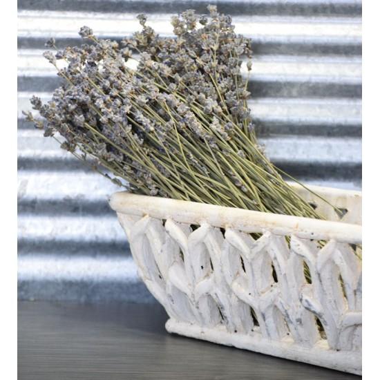 Dried English Lavender Bunch - Large Bundle of Royal Velvet