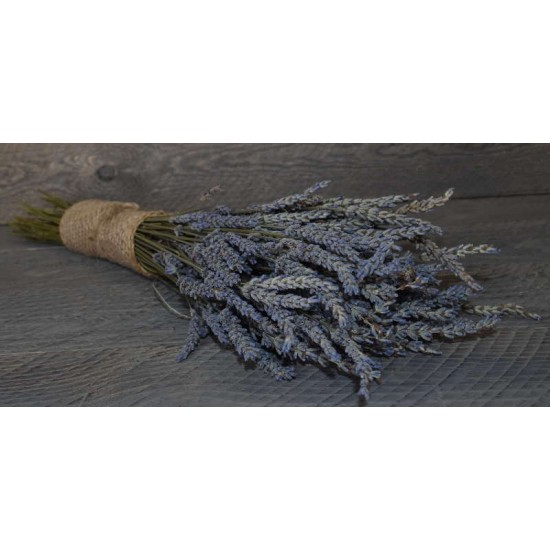 Dried Lavender Bunch - Grosso (French)