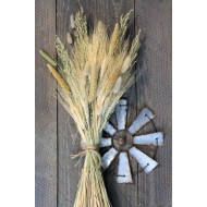 Late Summer Harvest Grain Bunch
