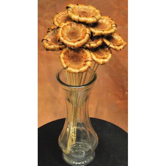 Protea Flower Natural and Stemmed