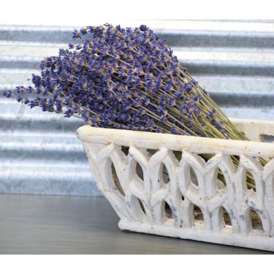 Super Blue Royal Velvet Lavender Bunch