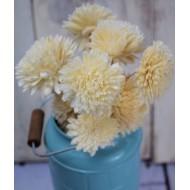 Wood Flowers - Wood Zinnia