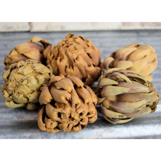 Dried Artichokes - Small