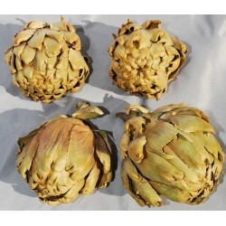 Dried Artichokes - Large