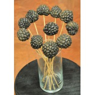 Dried Ata Fruit Pod - Stemmed