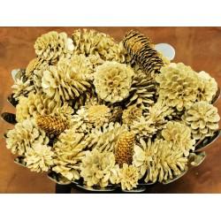 Bleach Assorted Pine cones