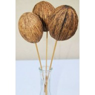 Dried Mintolla Balls (Pods)
