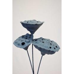 Slate Blue Lotus Pods on Stems
