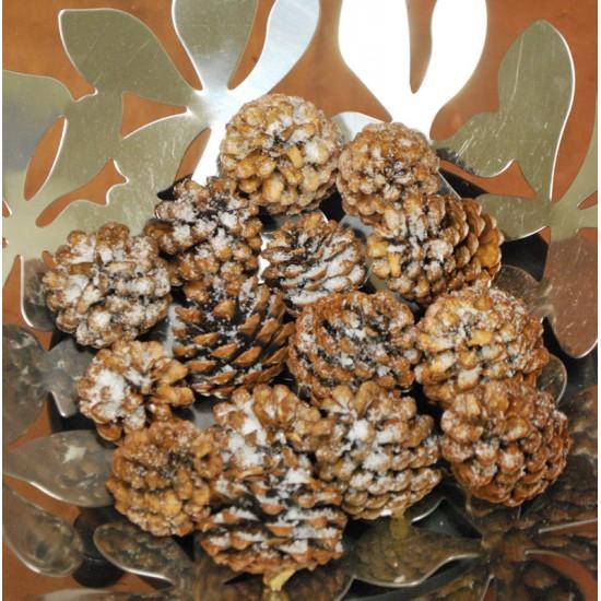 Snow Pine Cones - Snow Cones