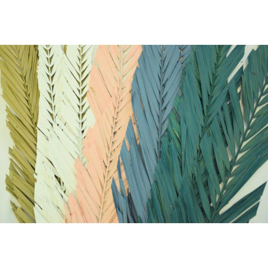 Cut Palm Frond Leaves - Colors