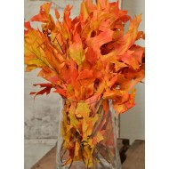 Dried Autumn Oak Leaves (1 LB Preserved leaves)