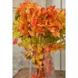 Dried Harvest tone Oak Leaves (1 LB Preserved leaves)
