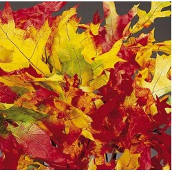 Dried Harvest tone Oak Leaves (1 LB Preserved leaves)
