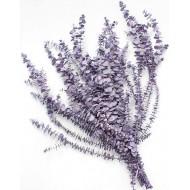 Preserved Eucalyptus - Pastel Lilac Purple