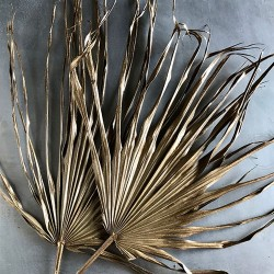 Dried Whole Palm Fronds - Painted Case