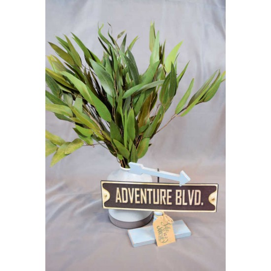 Preserved Willow Eucalyptus Bunch - Green