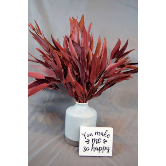 Preserved Willow Eucalyptus Bunch - Red