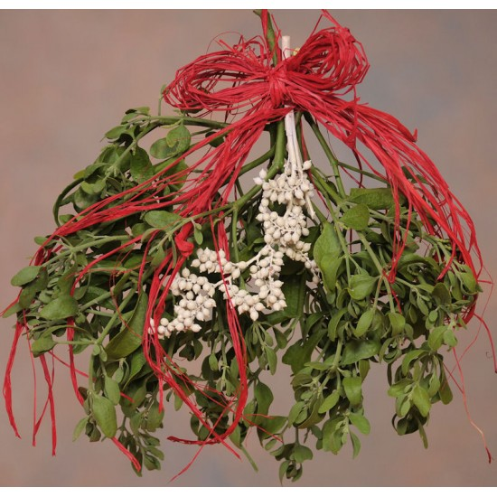 Fresh Mistletoe Bough Bouquet